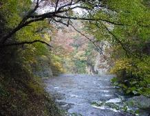 名勝袋田の滝